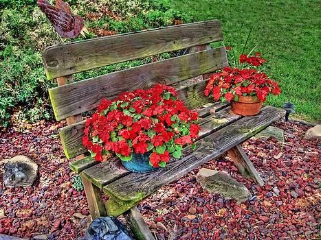 Bench In The Yard by Linda Gesualdo
