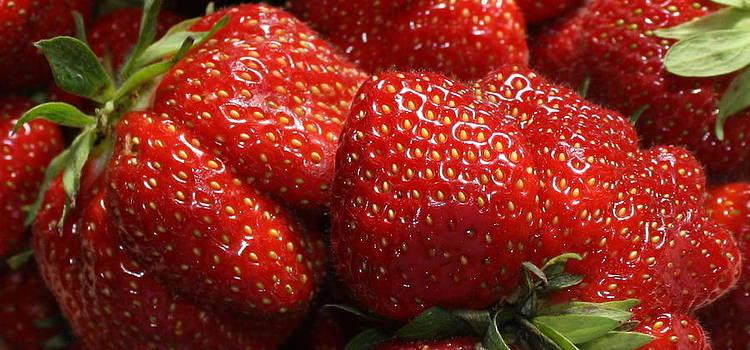Anne Babineau - berry berry good
