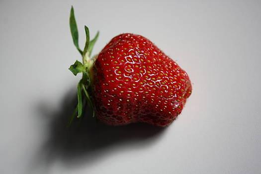 Anne Babineau - berry good