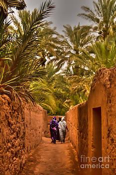 Nabucodonosor Perez - Between the palm trees
