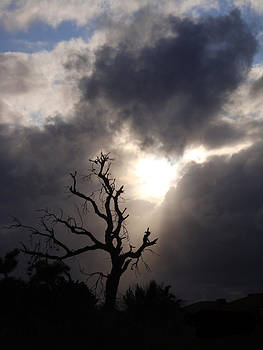 Beyond The Sun by Kelly Jones