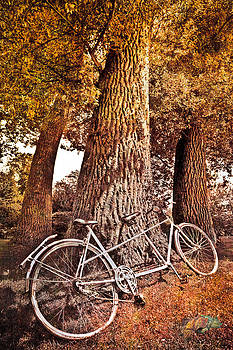 Debra and Dave Vanderlaan - Bicycle Built for Two