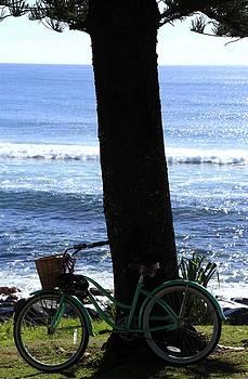 Noel Elliot - Bicycle By The Sea