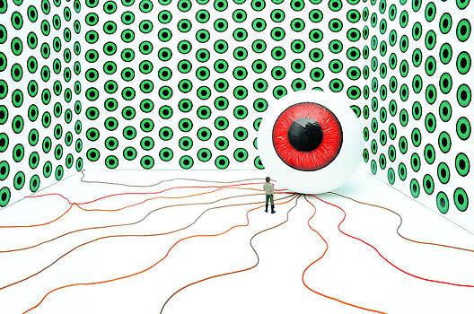 Big Brother by Alexandra-Flaminia Boc
