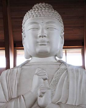 Casey Roche - Big Buddha