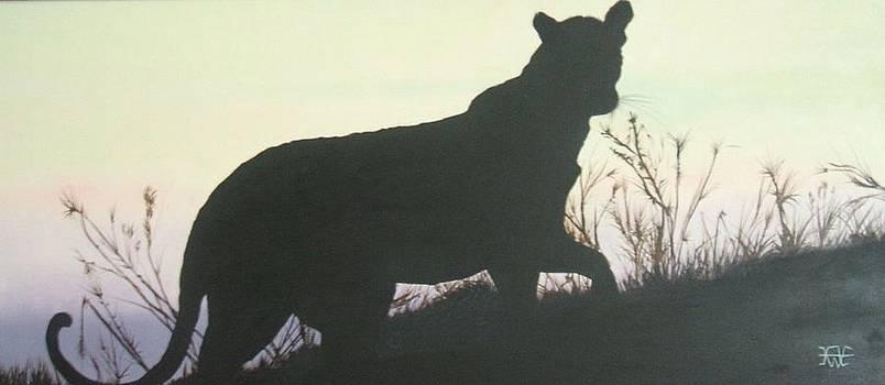 Big Cat Purple Haze by Alan Wilkinson