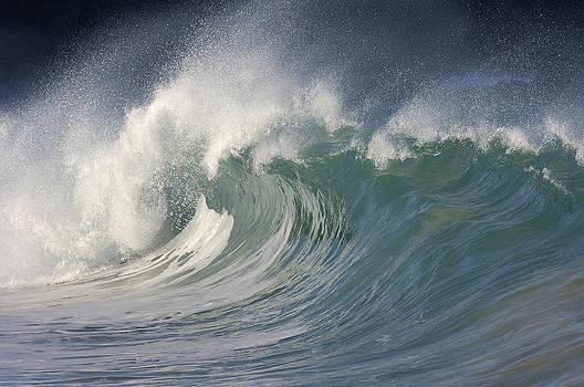 Big Wave, Waimea Bay, Oahu, Hawaii, Usa by Martin Ruegner