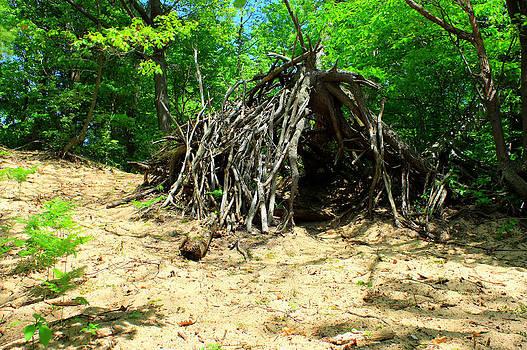 Bigfoot House - Sasquatch Cottage by Jeramie Curtice