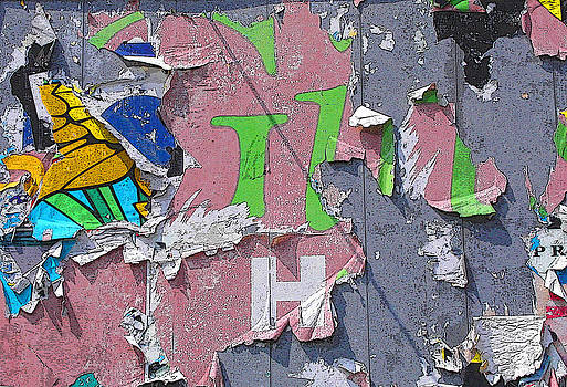 Anne Cameron Cutri - Billboard Abstract Butterfly