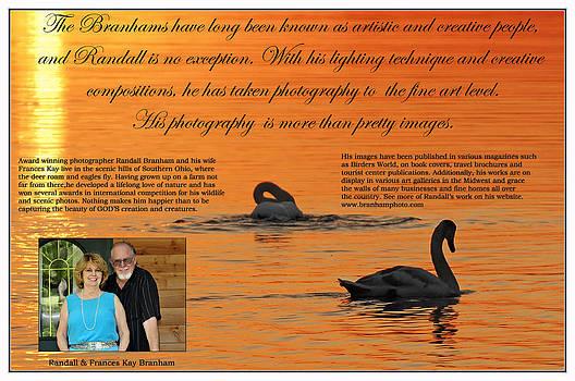Randall Branham - bio of branham