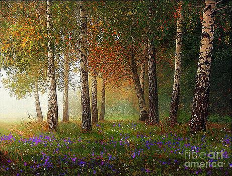 Birch Meadow by Robert Foster