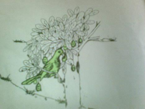 Bird by OKORO  Judith