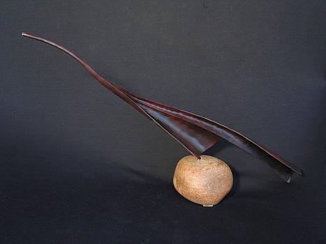 Bird on Rock by Todd Malenke