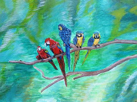 Birds of a feather  by Dis Art