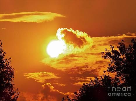 Judy Via-Wolff - Birth of the Sun