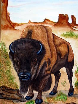 Bison-american buffalo by Emmanuel Turner
