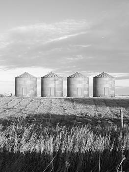 Black And White Silos by Tricia  Mccoo