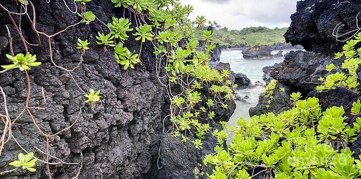 Black Sands Beach Hana Maui Hawaii by Dustin K Ryan