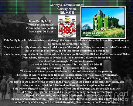 Blake Family of Galway by Shana Blake