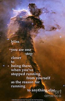 Bliss by Richard Donin