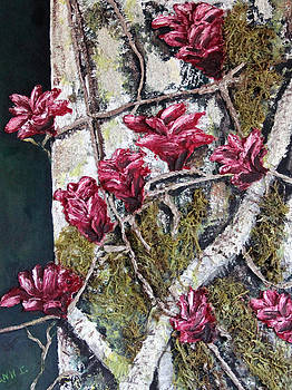Blooming by Ann Iuen