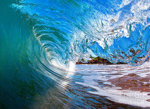 blue Curl by Monica and Michael Sweet