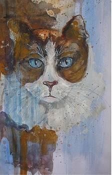 Blue Eyes by Brigitte Hintner