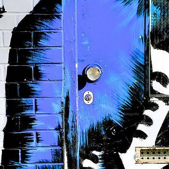 Blue Graffiti Door by Ferry Ten Brink