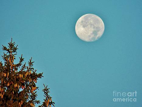 Judy Via-Wolff - Blue Moon 2