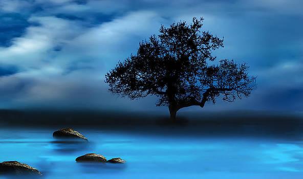 Blue Night by Katy Breen