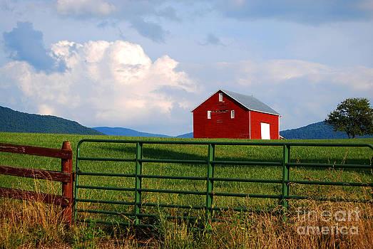 Blue Ridge Barn by Linda Mesibov