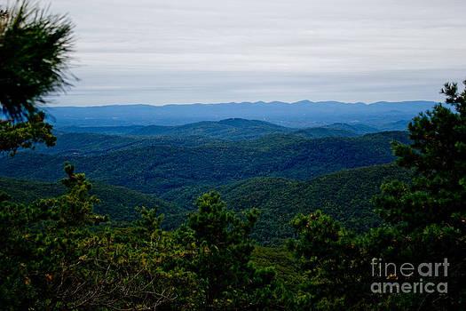 Blue Ridge Bliss by Tom Carriker