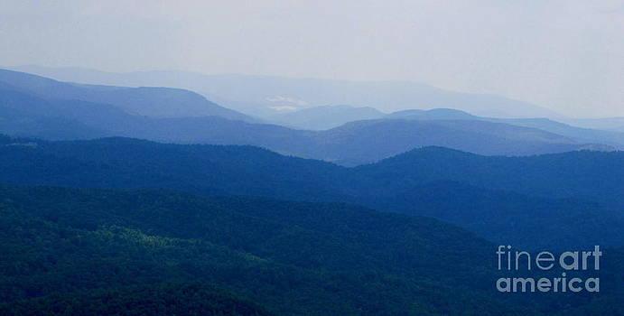 Blue Ridge Solitude by Tom Carriker