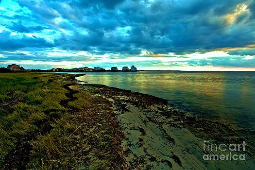 Adam Jewell - Blue Shores