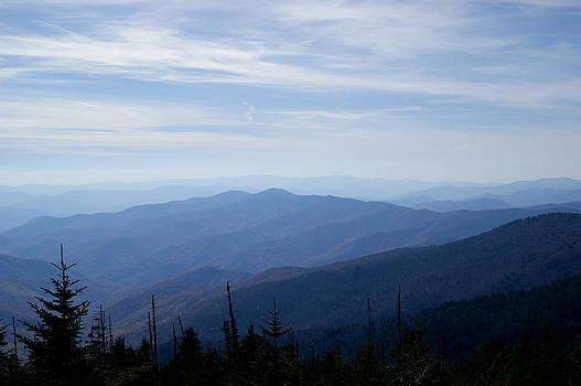 Blue Smoky Mountain by Tony Hammer