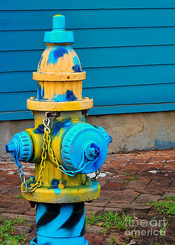 Blue Spotted Fire Hydrant by Jeanne  Woods