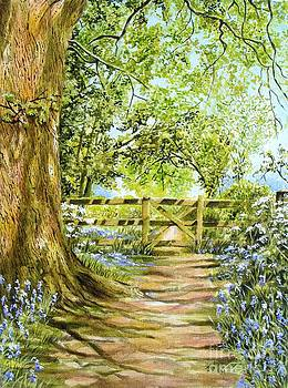 Bluebell Path by Frances Evans