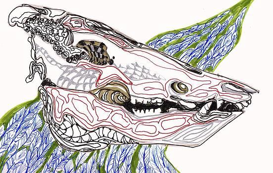 Boar Skull INk by Mary Schiros