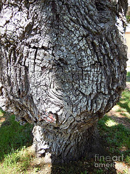 Bobblehead Tree by Joy Tudor