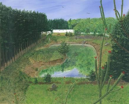 Bobs Pond by Lori  Theim-Busch