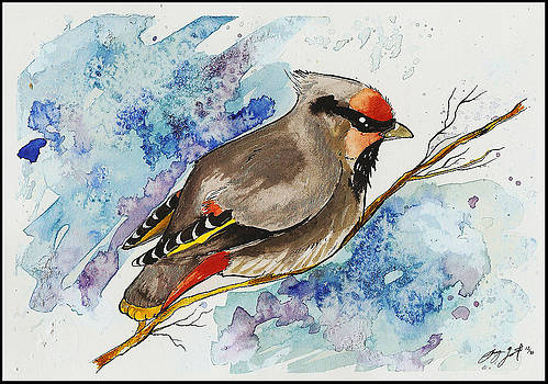 Bohemian Waxwing by Sydney Gregory