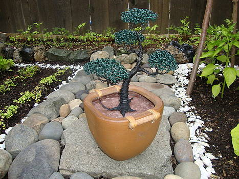 Bonsai Tree Medium Brown Square Planter by Scott Faucett