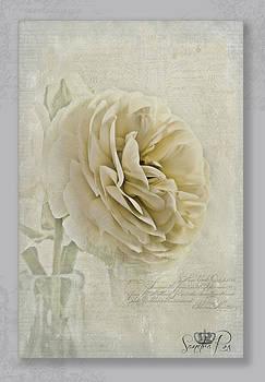 Botanical Notes  by Sandra Rossouw
