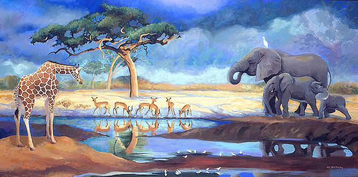 Botswana Watering Hole by Susan McNally