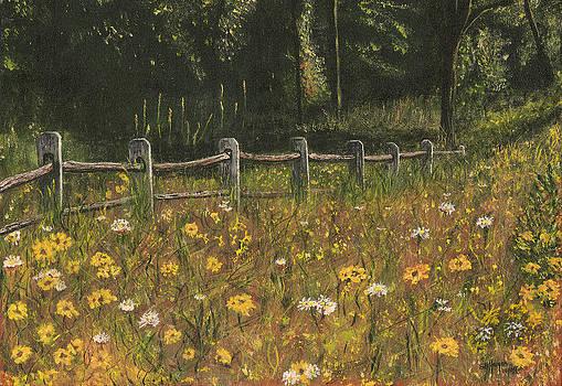 boundary fence Swan Lake NY by Stuart B Yaeger