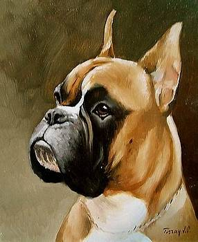 Boxer portrait by Joe Tiszai