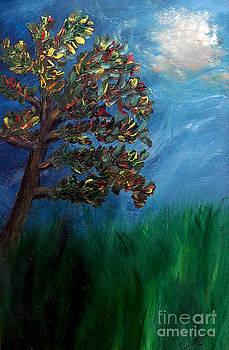Ayasha Loya - Branched Impressions
