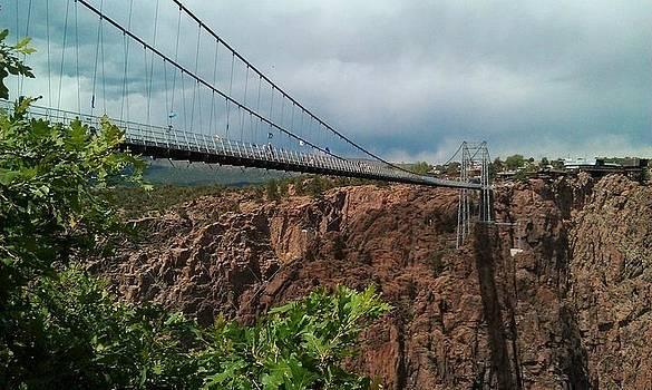 Bridge by Anne Back
