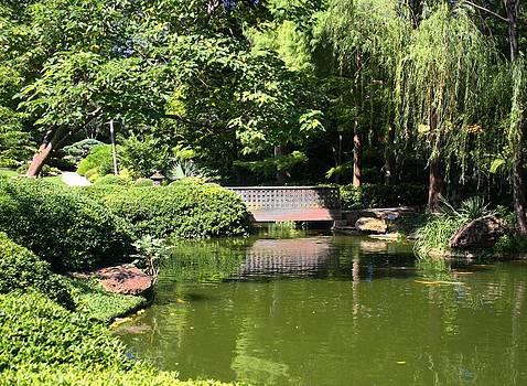 Lynnette Johns - Bridge In The Garden