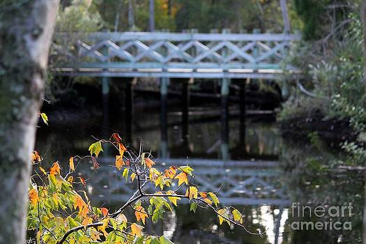 Bridge over the Pithlachascotee River by Theresa Willingham